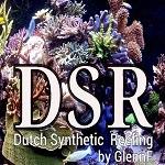 DSR-Starterpaket
