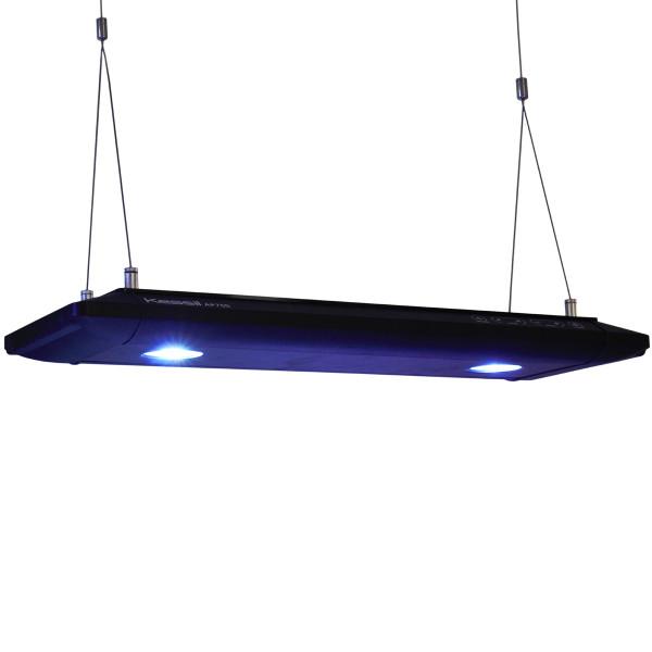 Kessil® LED AP700